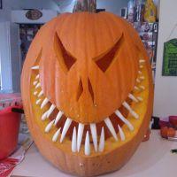 Now That Is A Monster Pumpkin