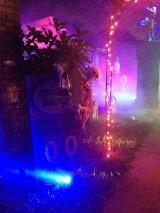 Halloween Night Walkthrough withAnimatronics